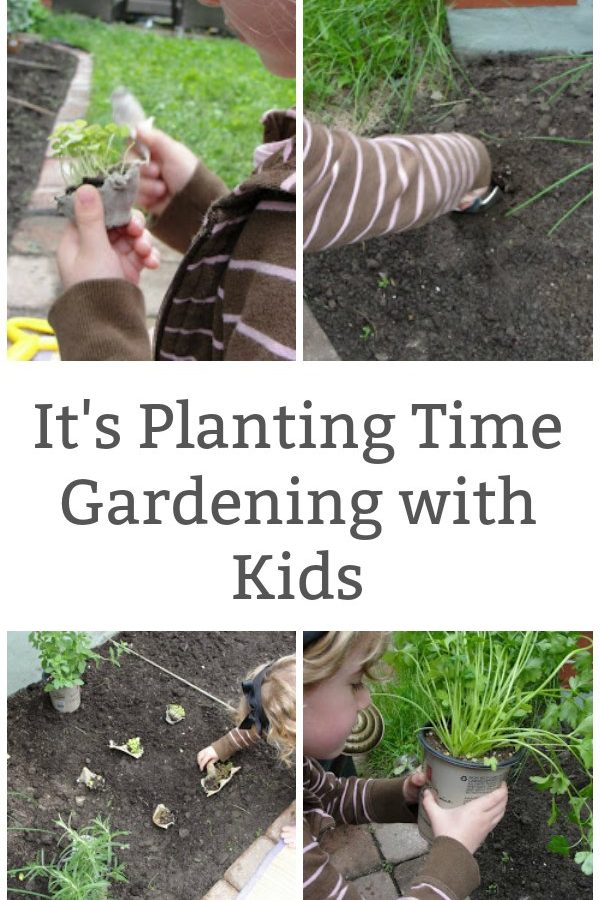 It's Planting Time – Gardening with Kids