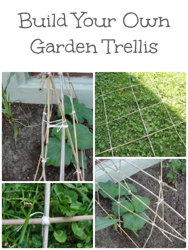 Diy garden trellis for Landscape your own garden