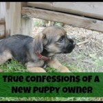 True Confession of a New Puppy Owner