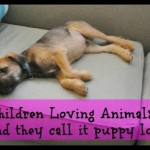 Children Loving Animals – The New Puppy