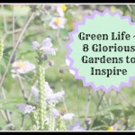 Green Life ~ 8 Glorious Gardens to Inspire