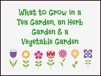 What to Grow in a tea garden, herb garden and vegetable garden