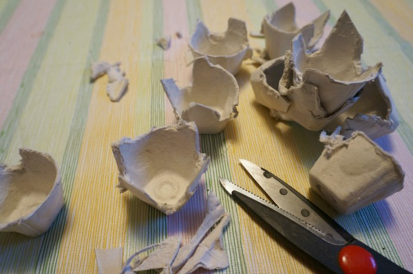 egg carton cut up