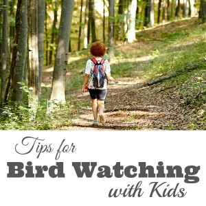 Tips for Bird Watching with Kids fb-min