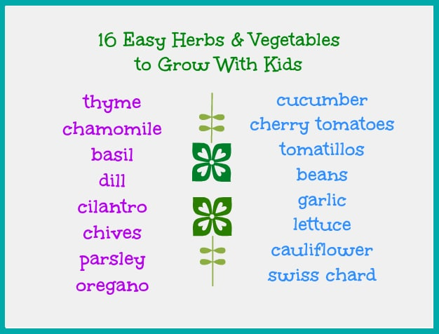 vegetables and herbs to grow with kids