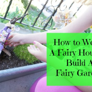 how to build a fairy house and fairy garden