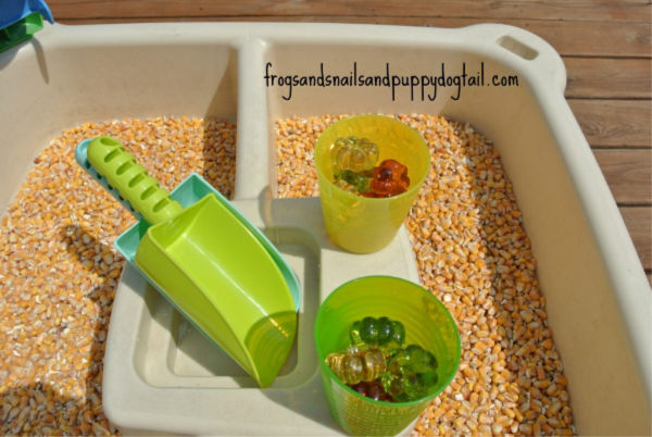corn sensory tray fall outdoor play