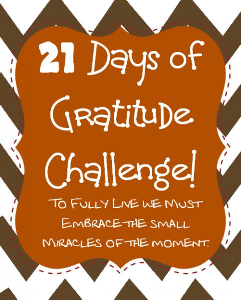 21 days of gratitude challenge 2013