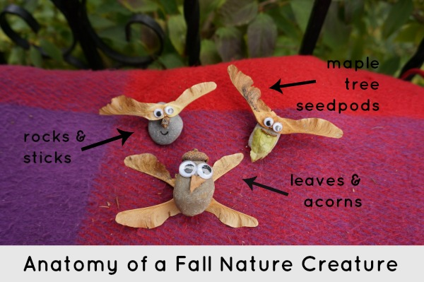 fall nature creature