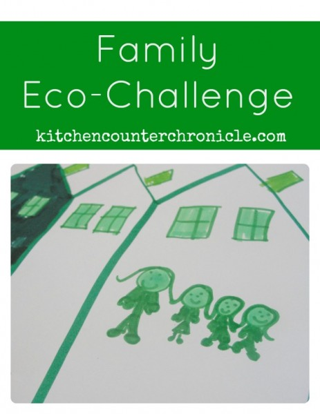 family eco-challenge button