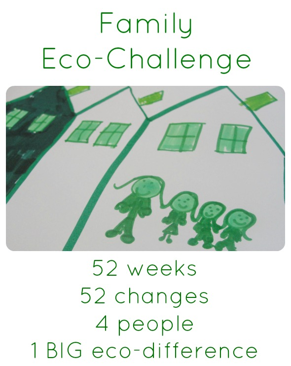 family eco-challenge collage
