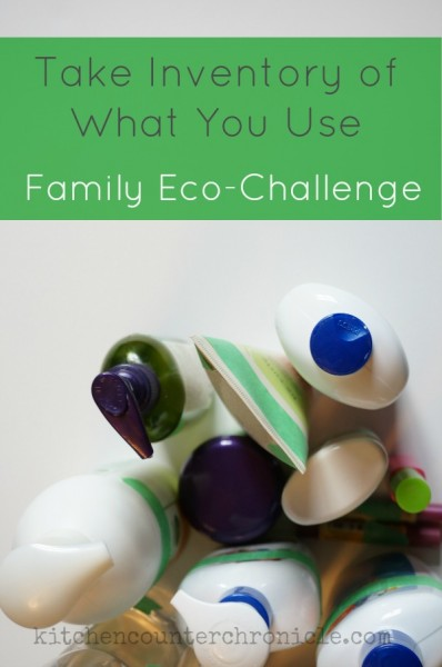 family eco-challenge take inventory