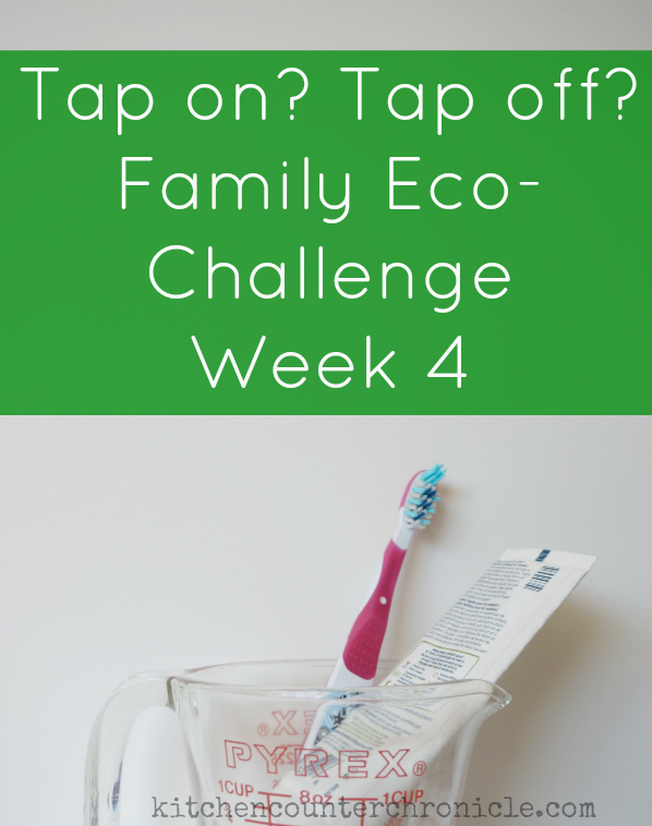 family eco-challenge
