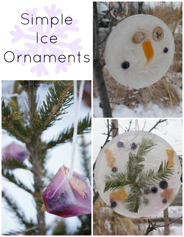 Simple Ice Ornaments