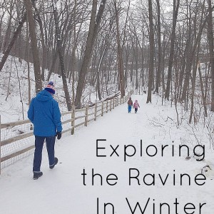 exploring the ravine & winter and summer .jpg