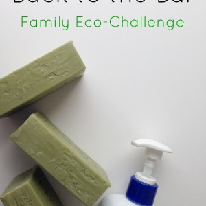 family eco-challenge bar soap