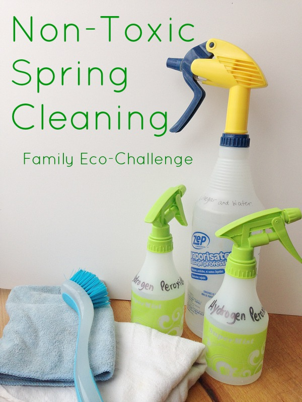 Family Eco-Challenge : Non-Toxic Spring Cleaning