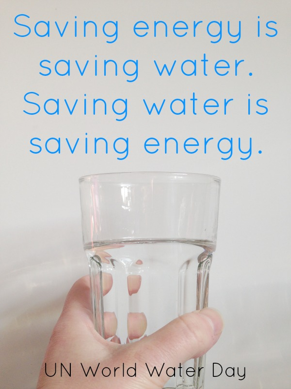 save water and energy quotation