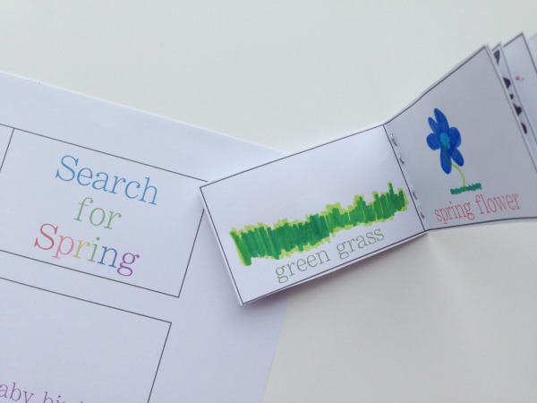 search for spring booklet drawing