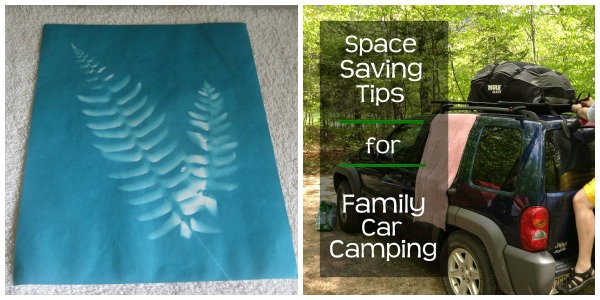fern and camping
