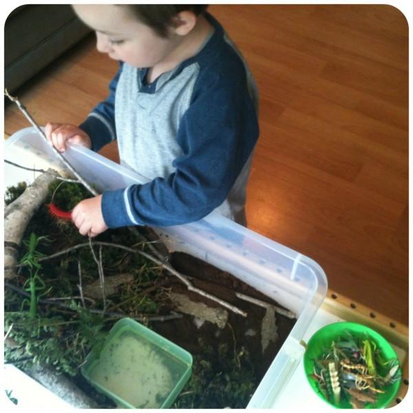 nature sensory bin