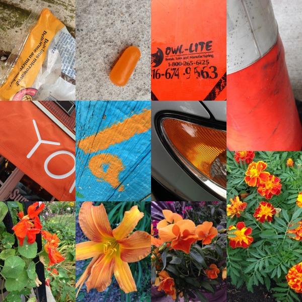 colour hunt orange