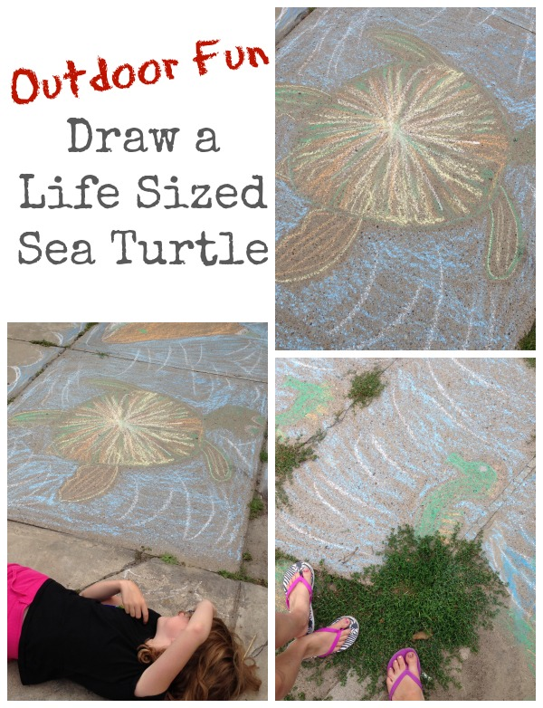 draw a life sized sea turtle