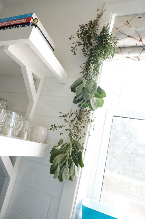 herbs hanging in kitchen