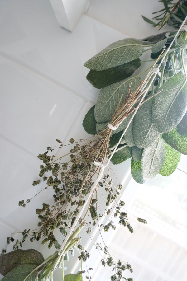 herbs on string