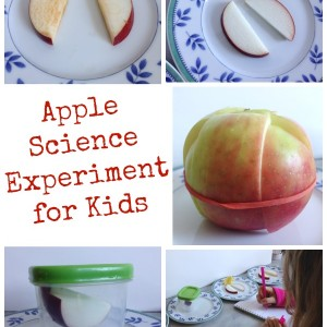 apple science experiment for kids