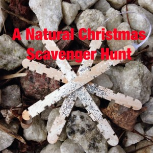 natural christmas scavenger hunt