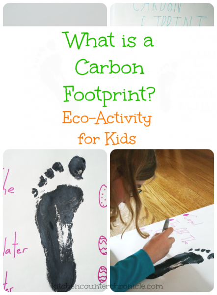 carbon footprint 3