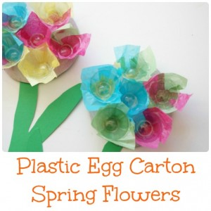 plastic egg carton spring flowers