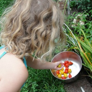 vegetable garden with kids