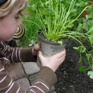 kid gardening with plant in hand