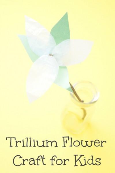 trillium flower craft for kids