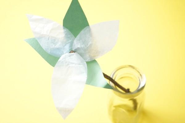 trillium flower of ontario