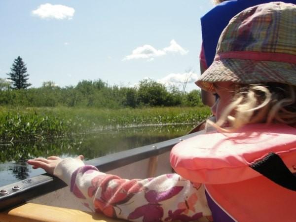 algonquin park canoe