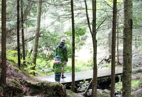 algonquin provincial park trail