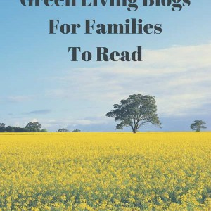 awesome green living blogs