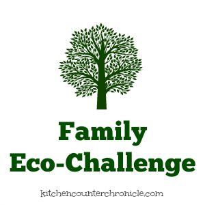 Family Eco-Challenge Re-boot