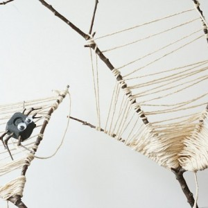 spider web nature craft