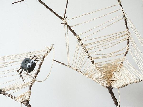spider web nature craft