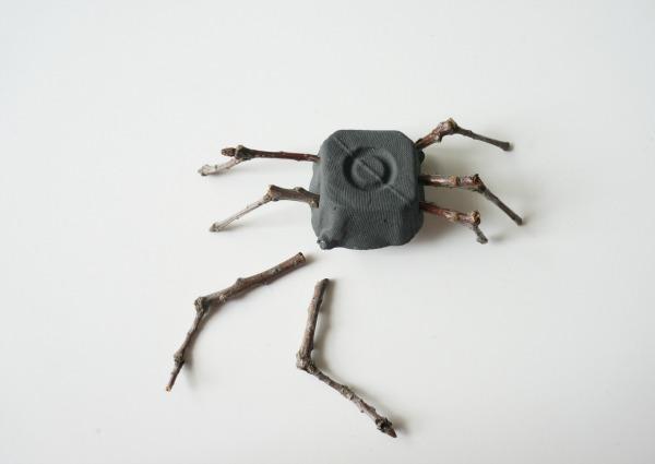 twig spider legs