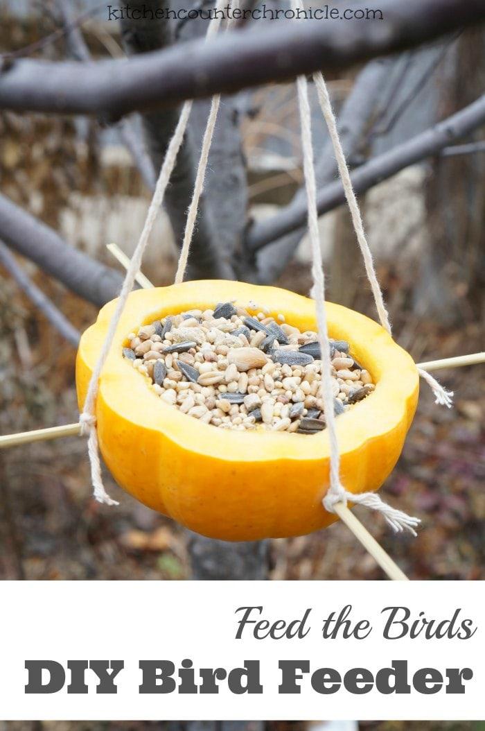 How to make a homemade bird feeder