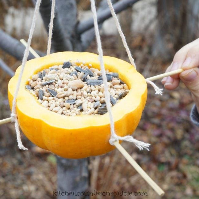 How to make a simpel homemade bird feeder fb