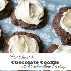 hot chocolate cookie with marshmallow frosting sidebar lrg
