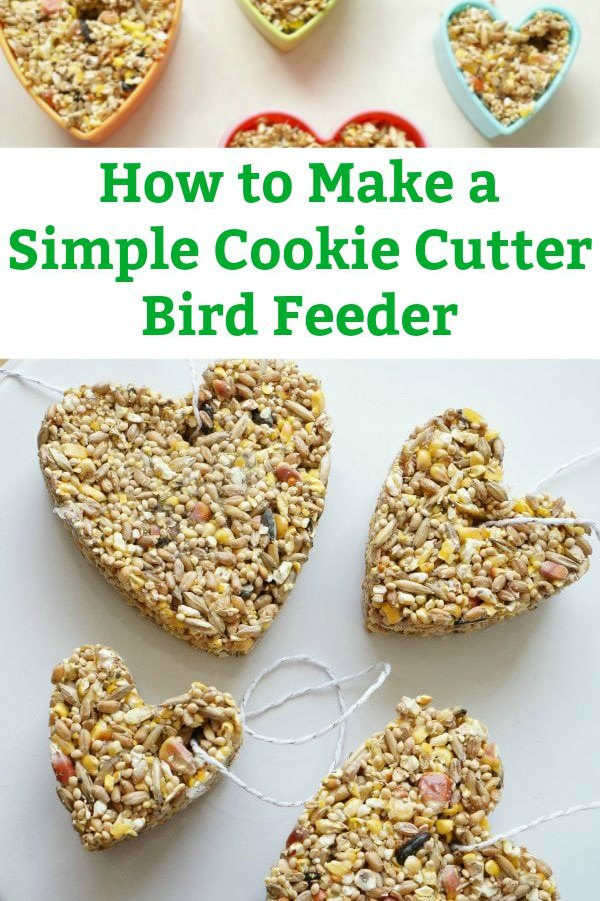 how to make a cookie cutter bird feeder with bird seed