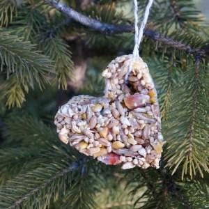 cookie cutter bird feeder in tree 1-min