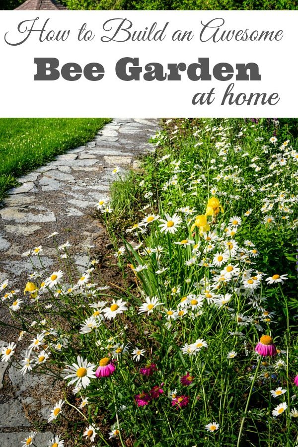 Build an Awesome Bee Garden at Home